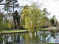 Harmer Green Village Pond - geograph.org.uk - 154400.jpg