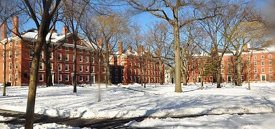 Harvard yard winter 2009j.JPG
