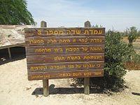 Hatzerim (7).jpg
