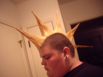 An example of a Liberty Spike Mohawk