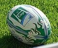 Heineken Cup 2010-2010 ballon.jpg