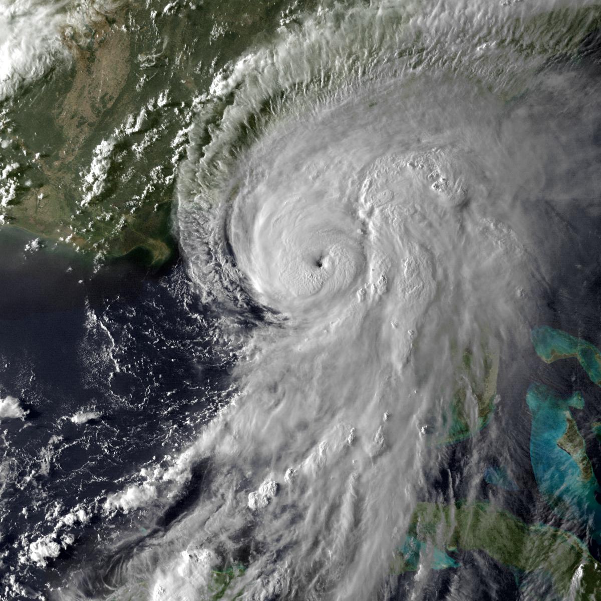 Hurricane Hermine - Wi...