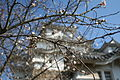 Himeji Castle No09 066.jpg