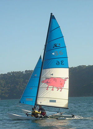 Hobie 16 - A Hobie 16 'The Pig' in action on Pittwater, Australia