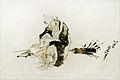 Hokusai au musée Guimet (8289710988).jpg
