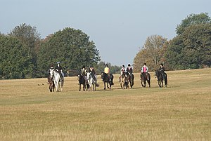 English: Horse Riders in Richmond Park The par...