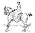 Horsemanship for Women 059.png