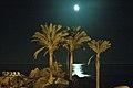 Hotel Arbatax Park (Nocturno) - panoramio (2).jpg