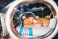A human infant sleeps in his incubator at a ne...