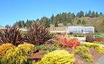 Humboldt Botanical Garden - Eureka, California - DSC02551.JPG