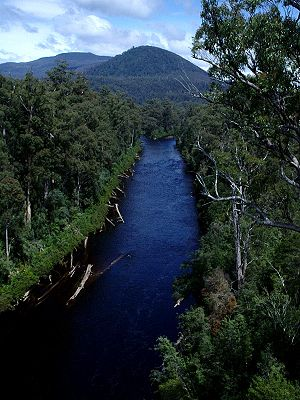 Huon Valley - Huon River in summer, located on the valley floor.