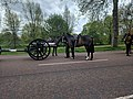Hyde Park gun salute 24 April 2018 01.jpg