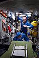 ISS-36 EVA-5 (l) Fyodor Yurchikhin and Alexander Misurkin.jpg