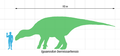 Iguanodon scale.png