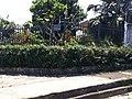 Iguape - SP - panoramio (234).jpg