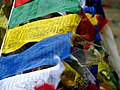 India - Ladakh - Trekking - 102 - prayer flags atop Yalang Nyau pass (3895808329).jpg