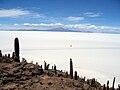 Isla de Pescado Bolivia Salar de Uyuni 1.jpg