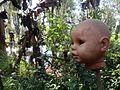 Isla de las muñecas 7.jpg