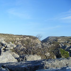 Tout Quarry - Part of Tout Quarry's landscape
