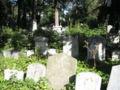Israelitischer Friedhof Währing September 2006 029.jpg