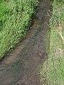 Jalový potok v Přistoupimi (001).JPG
