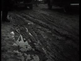 Bestand:Januari roert zijn staart-506756.ogv