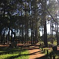 Jardim Botânico de Brasília I.jpg