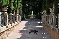 Jardines de Monforte Valencia.JPG