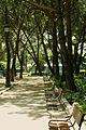Jardines de Sabatini (2).jpg