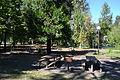 Jasper State Park (Jasper, Oregon).jpg