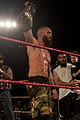 Jay Briscoe ROH Champion.jpg