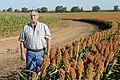Joe Reed, Edmonson, TX, standing by his red grain sorghum crop. (25117107985).jpg