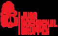 Juso-HSG Logo-web2.png