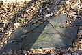 Königsfeld(Eifel) Jüdischer Friedhof702.JPG