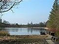 Kirkbride Pond - geograph.org.uk - 378833.jpg