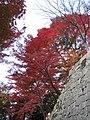 Kiyomizu-dera National Treasure World heritage Kyoto 国宝・世界遺産 清水寺 京都31.JPG