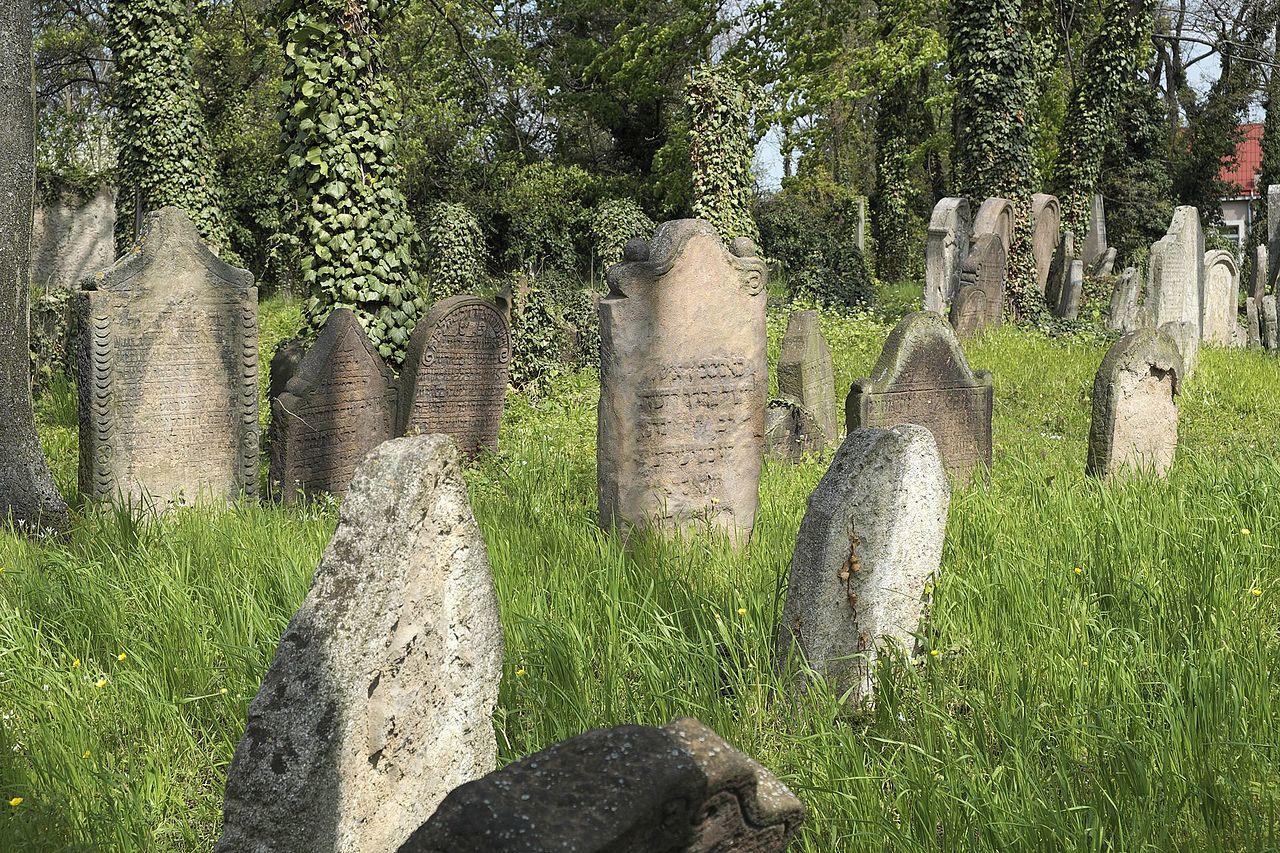 Kolín Alter Jüdischer Friedhof 356.jpg