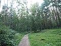 Kotelniki, Moscow Oblast, Russia - panoramio (118).jpg