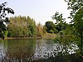 Kunčice, west pond 2.jpg