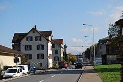 Lachen vilagheniro (venante de Altendorf) 196.JPG