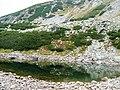 Lacul Pencu - panoramio.jpg