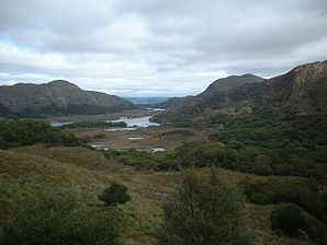 Ladies View County Kerry Ireland.jpg