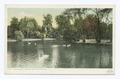 Lake in the Zoo, Fairmount Park, Philadelphia, Pa (NYPL b12647398-69418).tiff