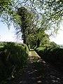 Lamerton Footpath 9 - geograph.org.uk - 429078.jpg