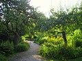 Landesgartenschau 1990 garden - IMG 6787.JPG