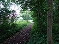 Landschaftsschutzgebiet Warmenau-Ufer LSG OS 00019 Datei 27.jpg