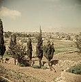 Landschap in de omgeving van Jeruzalem, Bestanddeelnr 255-9771.jpg