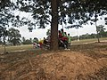 Langan Sepakbola Kuranji County Tanah Bumbu - panoramio.jpg