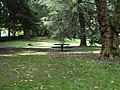 Laurelhurst Park SW solo picnic table and trails P8339.jpeg