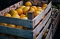 Lemons (Unsplash).jpg